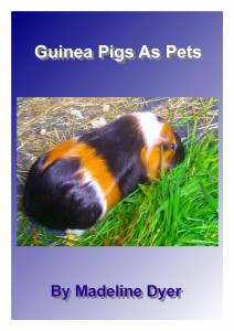 Guinea Pigs As Pets (#1)