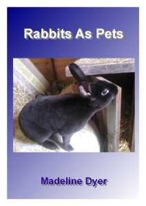 Rabbits As Pets (#3)