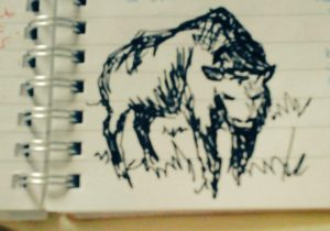 A quick sketch of the prophet bison from the Dream Land. Drawn when I was workshopping a scene in Fragmented.
